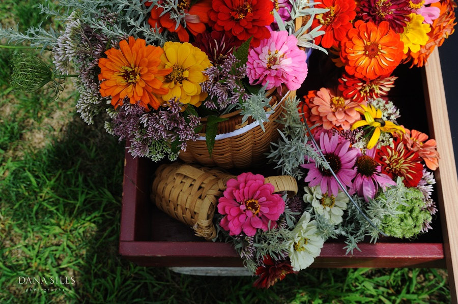 Colorful dahlias were among the day's floral stars. Arrangements were created by Flowers by Semia.